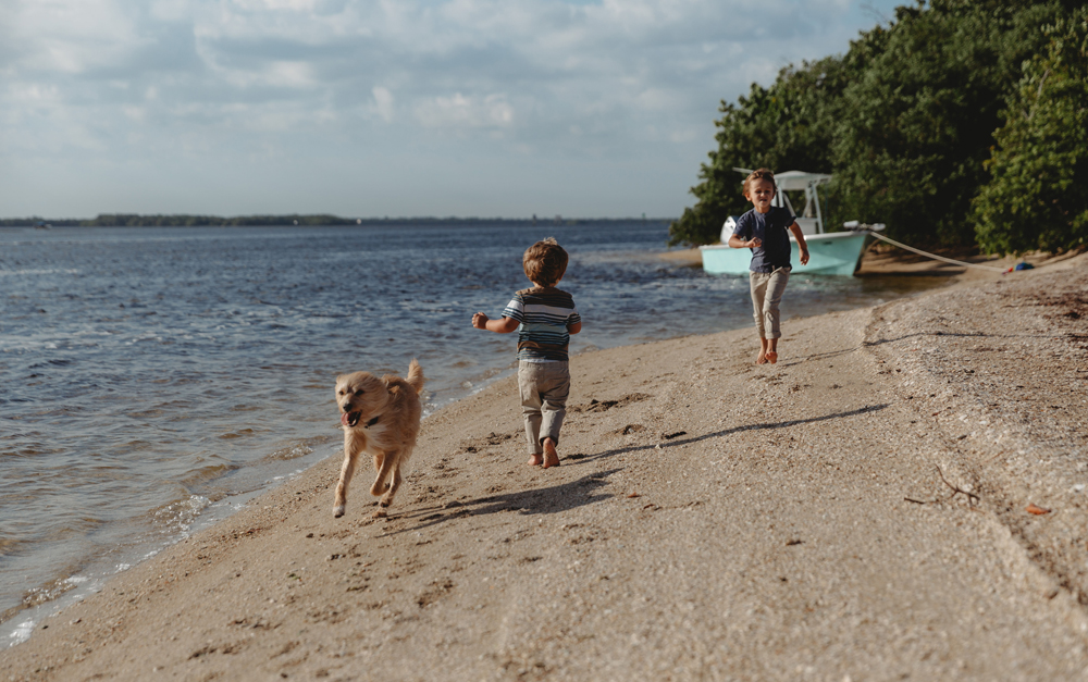 Naples Family Photographer, boys playing with dog next to water