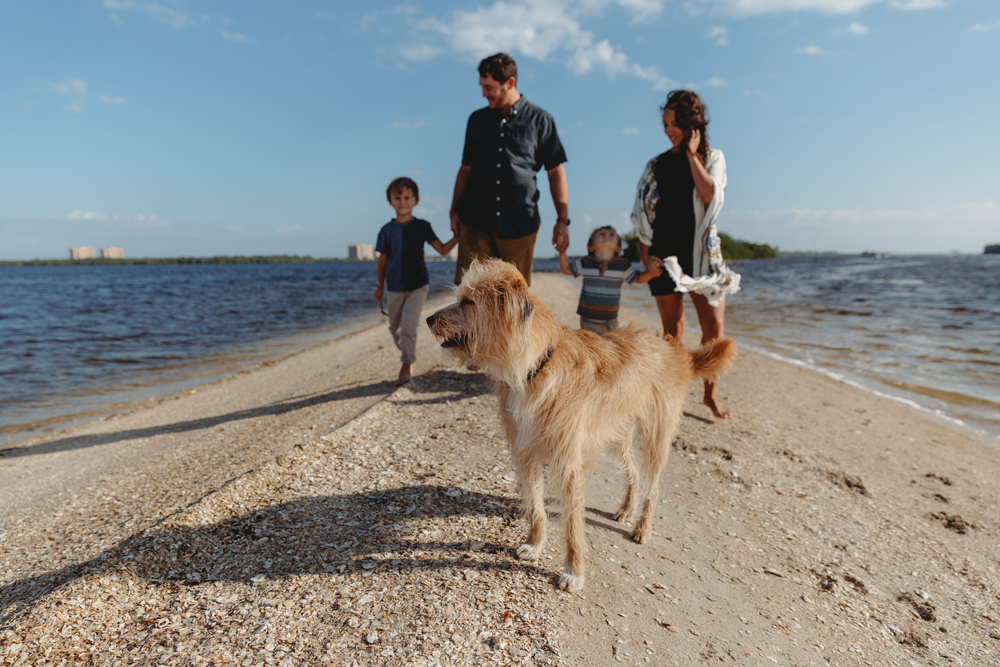 Naples Family Photographer, family at the beach with their dog