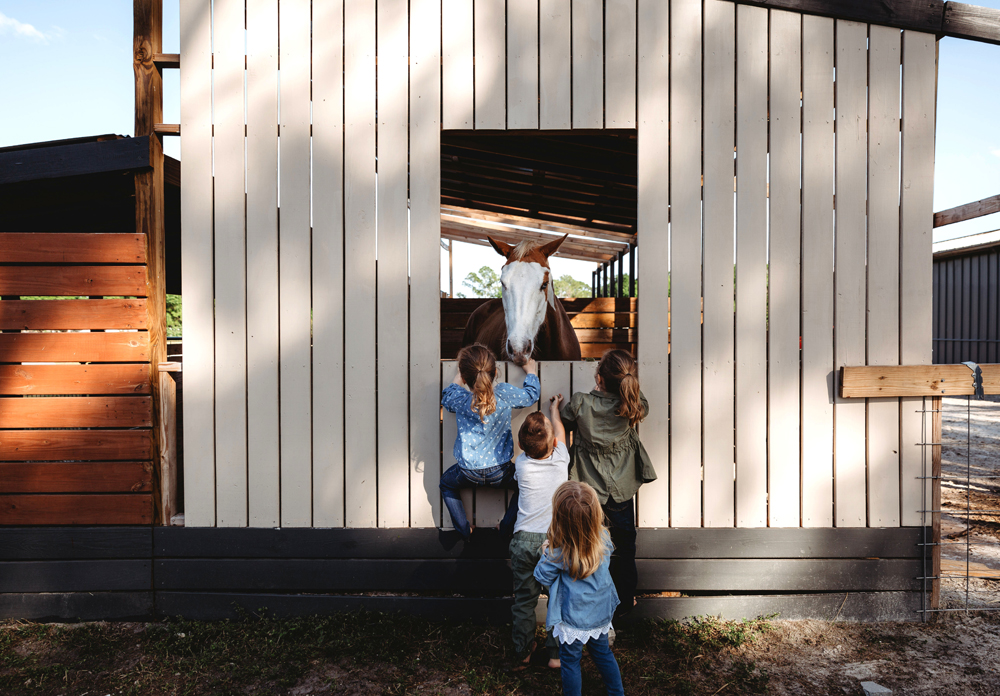 Naples Family Photographer, kids looking at horse through window